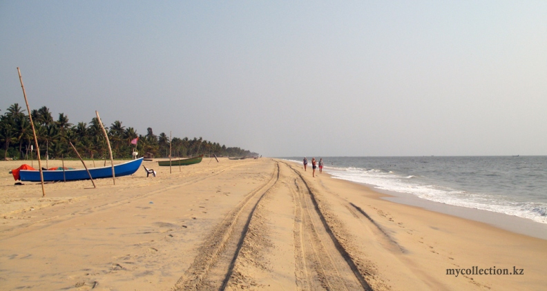 India-Kerala-Marari-Beach-2019.jpg
