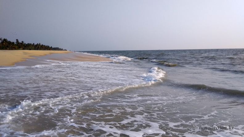India 2019 - Kerala - Mararikulam beach .jpg